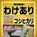 【わけあり】【1/8精米】29年産 福島県産コシヒカリ白米(5kg×1) 【送料無料】【期日指定不可】【即日発送】