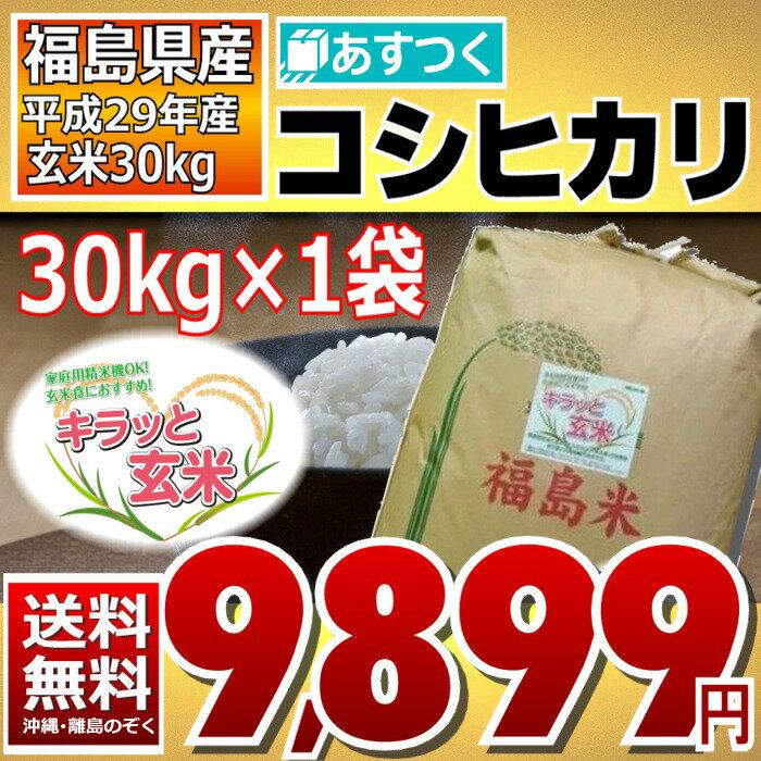 コシヒカリ 30kg 調整済玄米キラッと玄米 福島県 29年産 送料無料 あす楽_土曜営業