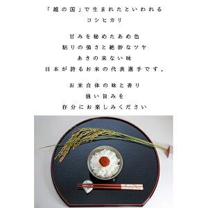 【平成28年】福島県産白米コシヒカリ10kg(5kg×2)【送料無料】【あす楽_土曜営業】