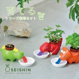栽培キット かわいい 栽培セット 家庭菜園 菜園セット Green zaurus グリーンザウルス GD-893