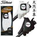 【ゴルフ】【グローブ】タイトリスト PROFESSIONAL(プロフェッショナル) TG77 グローブ【手袋】