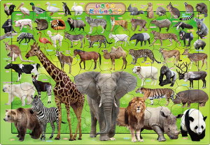 【あす楽】 APO-25-107 ペット・動物 いきものだいしゅうごう 63ピース パズル Puzzle 子供用 幼児 知育玩具 知育パズル 知育 ギフト 誕生日 プレゼント 誕生日プレゼント
