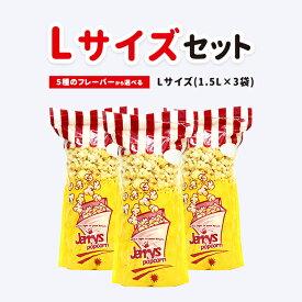 【半額セール】スイーツ ポップコーン Lサイズセット(Lサイズ×3袋)豆 おやつ スナック菓子 パーティー 彼岸 お供え 贈り物 プレゼント 内祝い プチギフト 義理