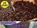 自家焙煎コーヒーニカラグア 400g コーヒー豆:【RCP】【HLS_DU】