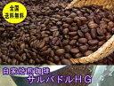 自家焙煎コーヒーサルバドルHG 400g:【RCP】【HLS_DU】