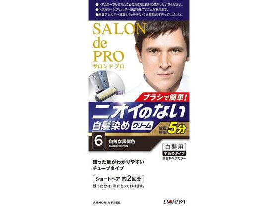 ダリヤ/サロン ド プロ 無香料ヘアカラー メンズスピーディ 白髪用 6