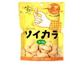 大塚製薬/ソイカラ チーズ味