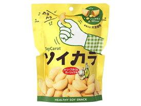 大塚製薬/ソイカラ オリーブオイルガーリック味