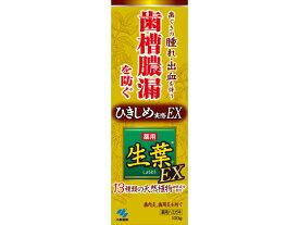 小林製薬/生葉EX100g
