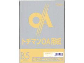 SAKAEテクニカルペーパー/極厚口カラーPPC B5 ライトブラウン 50枚