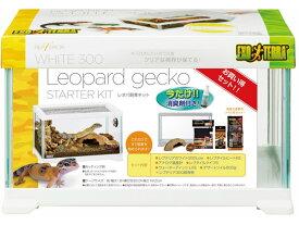 【お取り寄せ】ジェックス/レプテリアレオパ飼育キット