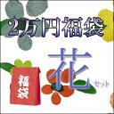 2万円福袋・花セット