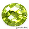 Green Tourmaline 2.61CT