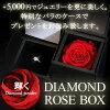 0.2 carats F color SI class excellent cut judgment memo platinum heart and Cupid diamond ring design ring engagement ring engage ring gift present