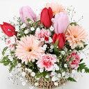 【春のお花・アレンジ・チューリップ】お祝い・お誕生日・結婚祝・出産祝・開店祝・結婚記念日・お礼・発表会・季節のお花・お返しプレ…