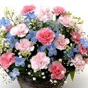 【ピンク&ブルーカラー・アレンジ・カーネーション】お祝い・お誕生日・結婚お祝・出産お祝・開店お祝・結婚記念日・お礼・発表会・季…