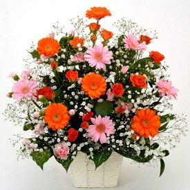 【オレンジ/ピンク・ガーベラ・アレンジ】お祝い・お誕生日・結婚お祝・出産お祝・開店お祝・結婚記念日・父の日・お中元・お礼・発表会・季節のお花・お返しプレゼント・イベント