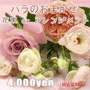 [バラ/ローズをメインにしたおまかせ花束・アレンジ]お祝い・お誕生日・結婚祝・出産祝・開店祝・結婚記念日・お礼・発表会・季節のお…