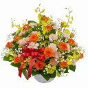 【幸せを呼ぶ黄色の蘭】お祝い・お誕生日・結婚お祝・出産祝・開店祝・結婚記念日・お礼・発表会・季節のお花・学芸会・秋のフラワーギ…