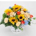 【夏・ヒマワリ・サンフラワー・アレンジ】お祝い・お誕生日・結婚お祝・出産お祝・開店お祝・結婚記念日・父の日・お中元・お礼・発表…