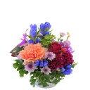 【お花屋さんにおまかせ】お祝い・お誕生日・結婚お祝・出産祝・開店祝・結婚記念日・お礼・発表会・季節のお花・学芸会・秋のフラワー…