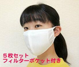 【送料無料】洗える布マスク フィルターポケット付き5枚セット 漂白剤も使えて衛生的 内ポケットにフィルターを入れて使えます。立体マスク おやすみマスク 布マスク 大人用マスク 伸び伸びマスク やわらかマスク フィルターポケット付き