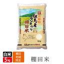 新米 みかた 棚田米 白米 5kg コシヒカリ こしひかり 天空の城 こうのとりで有名な 西日本 兵庫県 但馬産 食味 ランキ…