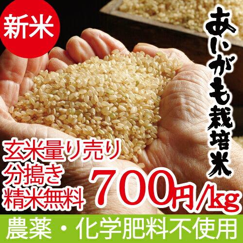 新米 無農薬 無化学肥料 玄米(精米可) 量り売り あいがも米 29年産 西日本 兵庫県 但馬産食味 特A 米 健康食 へも最適 アイガモ 農法 玄米カイロ 最適 平成29年産
