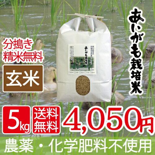 無農薬 無化学肥料 送料無料 玄米 5kg あいがも米 29年産 西日本 兵庫県 但馬産食味 特A 米 健康食 へも最適 アイガモ 農法 玄米カイロ 最適 平成29年産 合鴨米