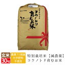 クーポン利用で16500円 新米 減農薬 無化学肥料 特別栽培米 生命を育むお米 送料無料 コウノトリ育むお米 玄米 30kg …