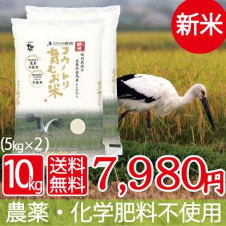 """新三月 28 年度有机""""自然饭健康饮食 ! 贡献的吃 ! 水稻稻稻鹳孕育生命培育 28 5 公斤 × 2 袋有机肥生产""""越光""""西日本田岛从吃特别一个美国电影鹳 Daisakusen ! 支持"""