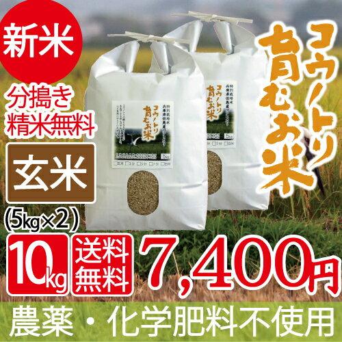 新米 無農薬 無化学肥料 送料無料 玄米 10kg 5kg×2袋 食べる健康!食べる貢献! コウノトリ育むお米 有機 肥料 コシヒカリ 西日本 但馬産 特A 玄米カイロ 無農薬米 平成30年産