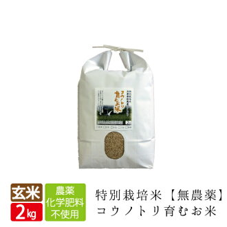 Rookie! 0/2013 (Specially cultivated rice) from organic cultivation storks nurture rice Brown rice 1 kg