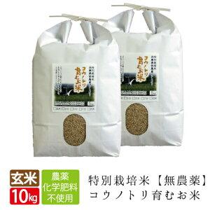 新米 無農薬 無化学肥料 送料無料 玄米 10kg 5kg×2袋 食べる健康!食べる貢献! コウノトリ育むお米 有機 肥料 コシヒカリ 西日本 但馬産 特A 玄米カイロ 無農薬米 令和元年産