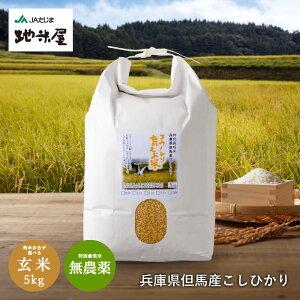 新米予約 無農薬 玄米5kg 無化学肥料 送料無料 玄米 無農薬玄米 食べる健康!生命を育む コウノトリ育むお米 有機 玄米 無農薬 コシヒカリ 但馬産 特A 無農薬米 玄米食 発芽玄米 寝かせ玄米