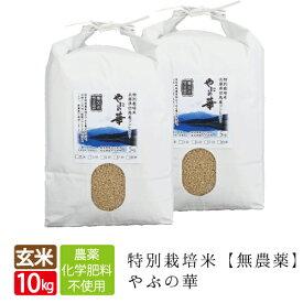 新米 無農薬 無化学肥料 送料無料 玄米 10kg 5kg×2袋 無農薬玄米 やぶの華 養父市限定有機 肥料 コシヒカリ 西日本 但馬産 特A 玄米カイロ 無農薬米 令和元年産