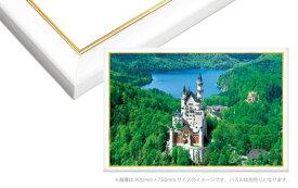 EPP-64-532 ゴールドライン No.32 / 10-D シャインホワイト 49×72cm(ラッピング不可) フレーム エポック社 【あす楽】