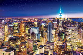 EPO-10-809 風景 ニューヨークの夜景 -アメリカ 1000ピース ジグソーパズル 【あす楽】 パズル Puzzle ギフト 誕生日 プレゼント