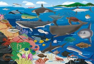 BEV-80-029 子供用パズル 海の生き物おぼえちゃおう! 80ピース ジグソーパズル パズル Puzzle ギフト 誕生日 プレゼント