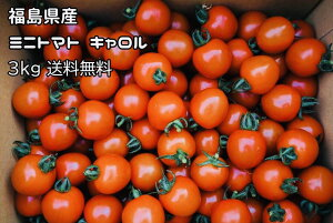 3kg ミニトマト キャロルスター 要冷蔵便 福島県産