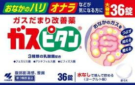 【第3類医薬品】ガスピタン 36錠 小林製薬 ガスピタン36T [ガスピタン36T]【返品種別B】