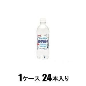 伊賀の天然水強炭酸水 500ml(1ケース24本入) サンガリア テンネンスイキヨウタンサン500X24