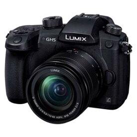 DC-GH5M-K パナソニック ミラーレス一眼カメラ「LUMIX GH5」標準ズームレンズキット Panasonic