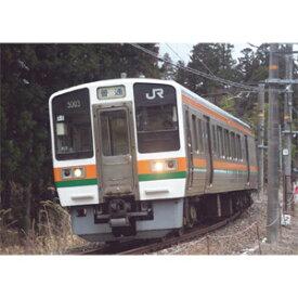 [鉄道模型]マイクロエース 【再生産】(Nゲージ) A2664 213系-5000 飯田線 2両セット