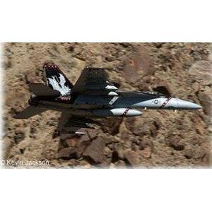 1/32 F/A-18E スーパーホーネット【04994】 ドイツレベル