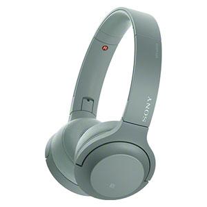 WH-H800 G ソニー Bluetooth対応ダイナミック密閉型ヘッドホン (ホライズングリーン) SONY h.ear on 2 Mini Wireless