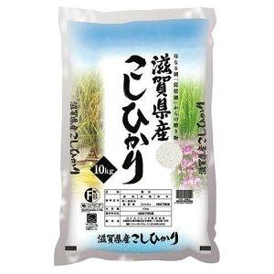 滋賀県産こしひかり 10kg 滋賀県 シガコシヒカリ10キロ