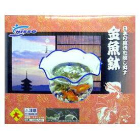 金魚鉢(大) マルカン キンギヨバチダイNWB-042