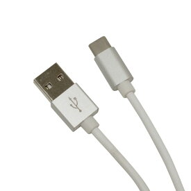 R02CAAC2A01SV ラスタバナナ 充電/転送対応 2.4A Type-C USBケーブル 20cm(シルバー)