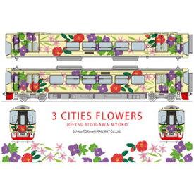[鉄道模型]ホビーセンターカトー (Nゲージ) 16011-9 えちごトキめき鉄道「3市の花号」(ET122-8)